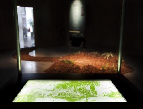 08/10/19 – Exposition personnelle de Lia Giraud au Cube 521